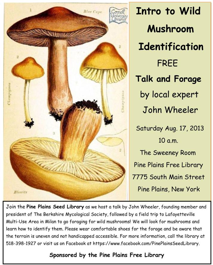 Mushroom_flyer